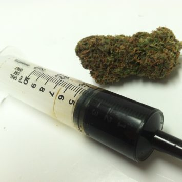 10 Grams Cannabis Oil Hash Oil 355x355